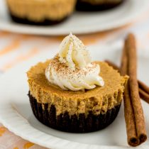 Chocolate-Bottom Pumpkin Mini Cheesecakes-small square image-side view