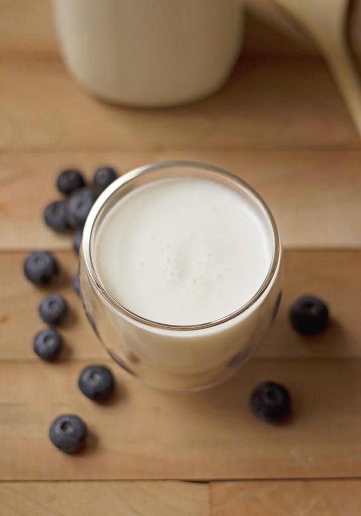 milk kefir-01