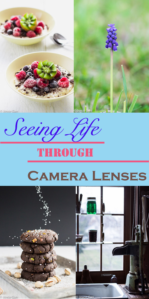 seeing life through camera lenses