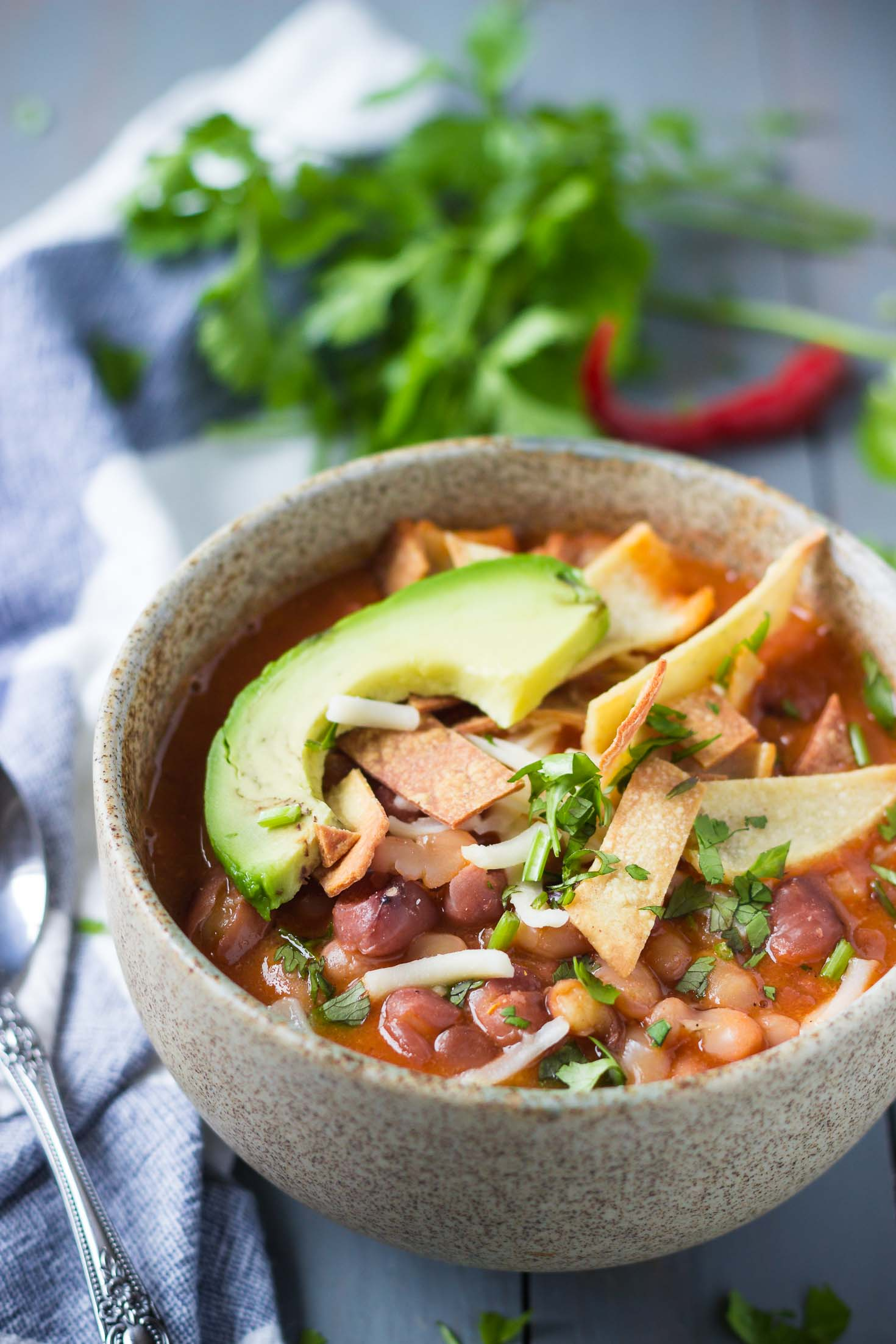 3-Bean Vegan Enchilada Soup-one bowls, side view