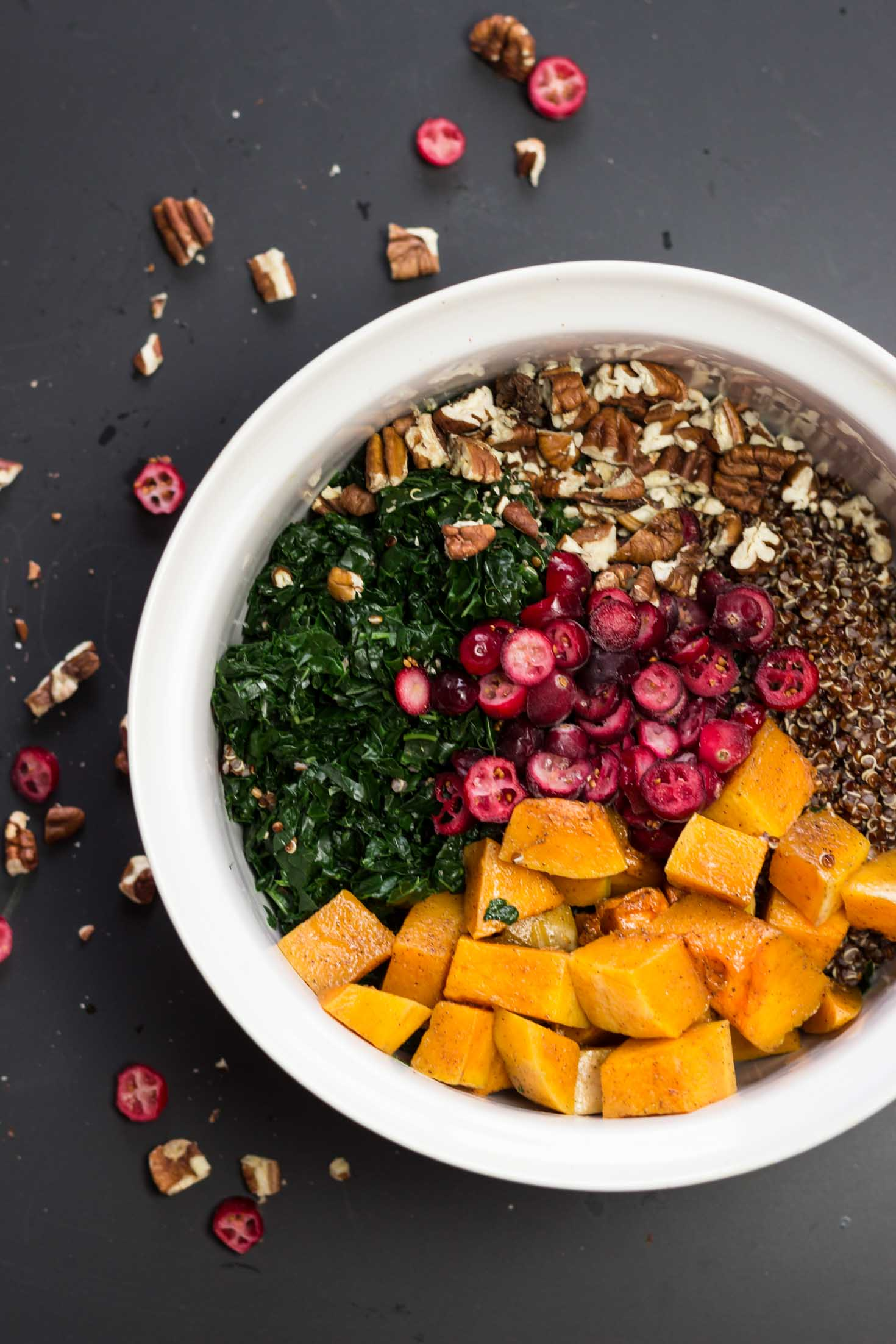 Cranberry, Kale and Roasted Butternut Squash Red Quinoa-top view with all ingredients