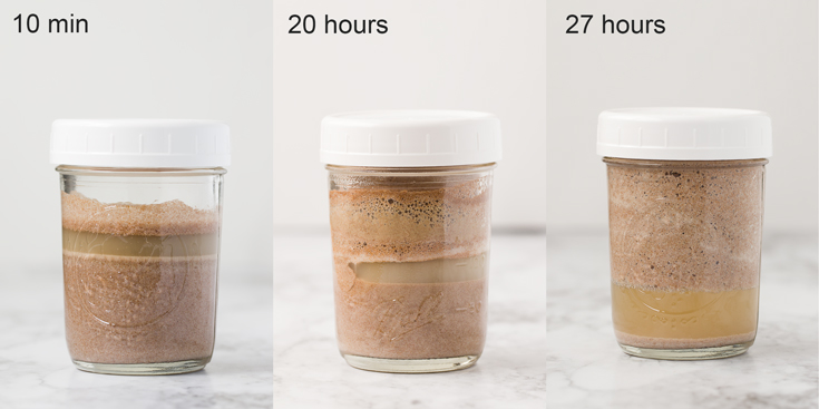 2-ingredient Gluten-free Sourdough Starter-stacked image-fermentation process at different time