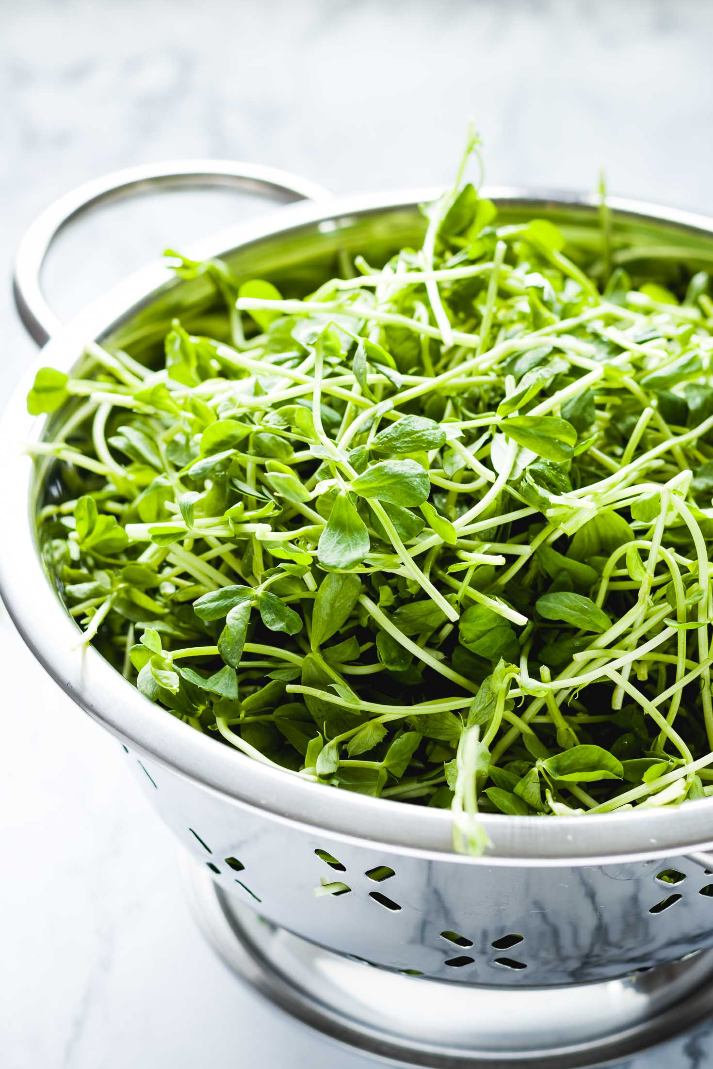 Pea Shoots Mango Rainbow Salad-backlited closeup view of green pea shoots in a metal colander.